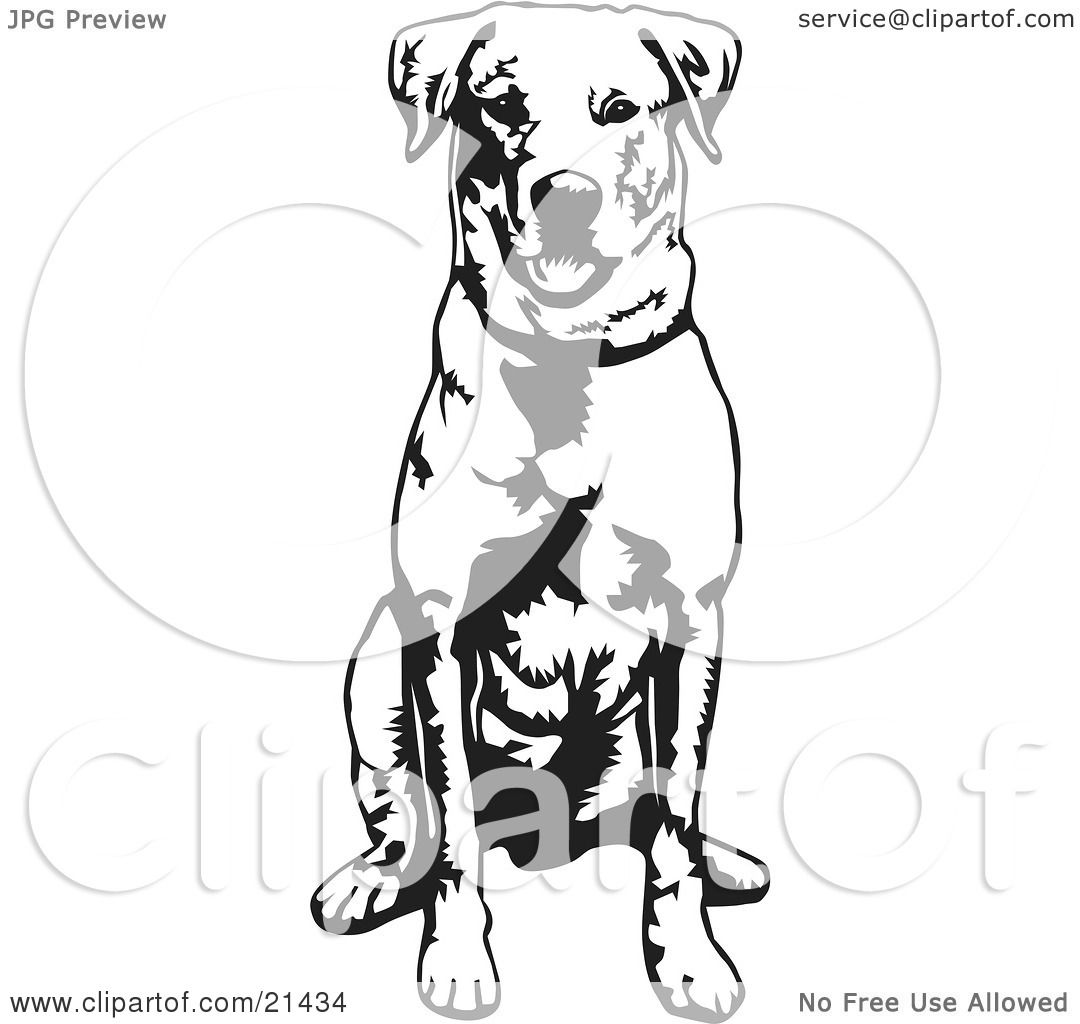 Clipart Illustration of an Obedient Labrador Retriever Dog Seated ...