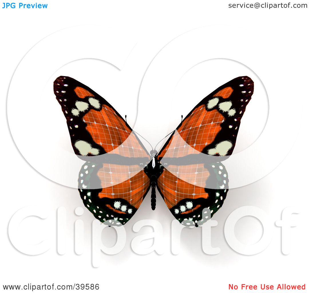 Clipart Illustration Of An Orange Solar Panel Butterfly By