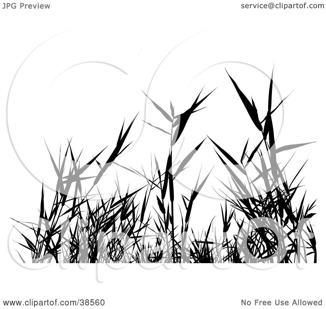 garden weeds clipart - photo #33