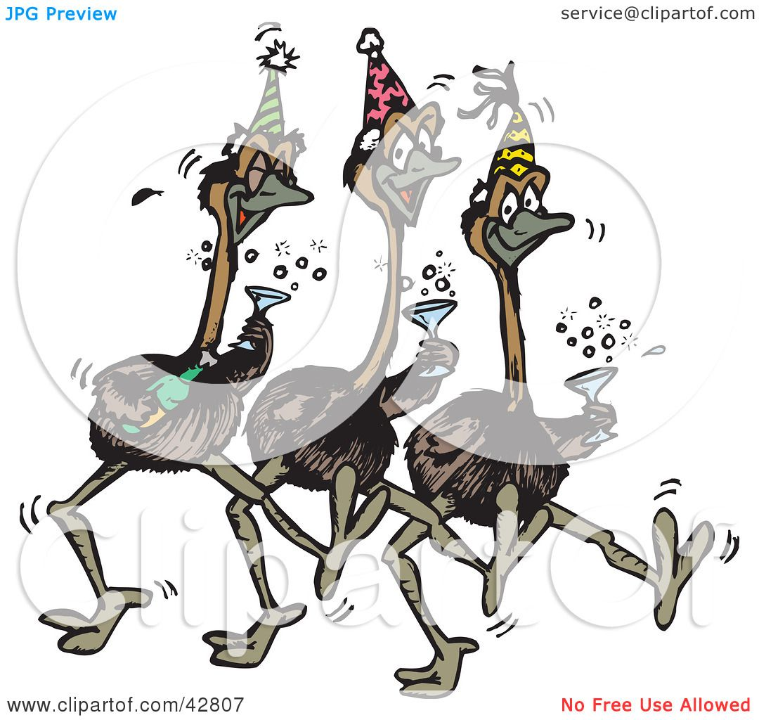 Clipart Illustration of Three Emus Dancing, Drinking Champagne And ...