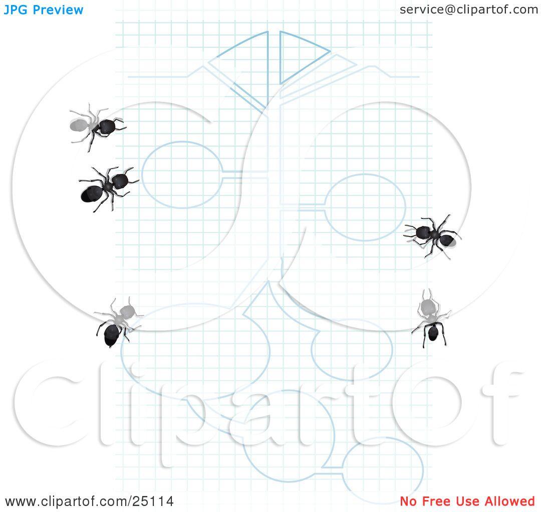 White ants white ants crossword photos of white ants crossword malvernweather Images