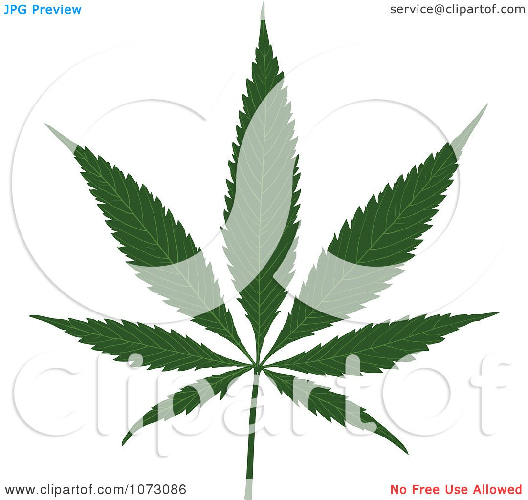Black Weed Leaf Clip Art Images & Pictures - Becuo