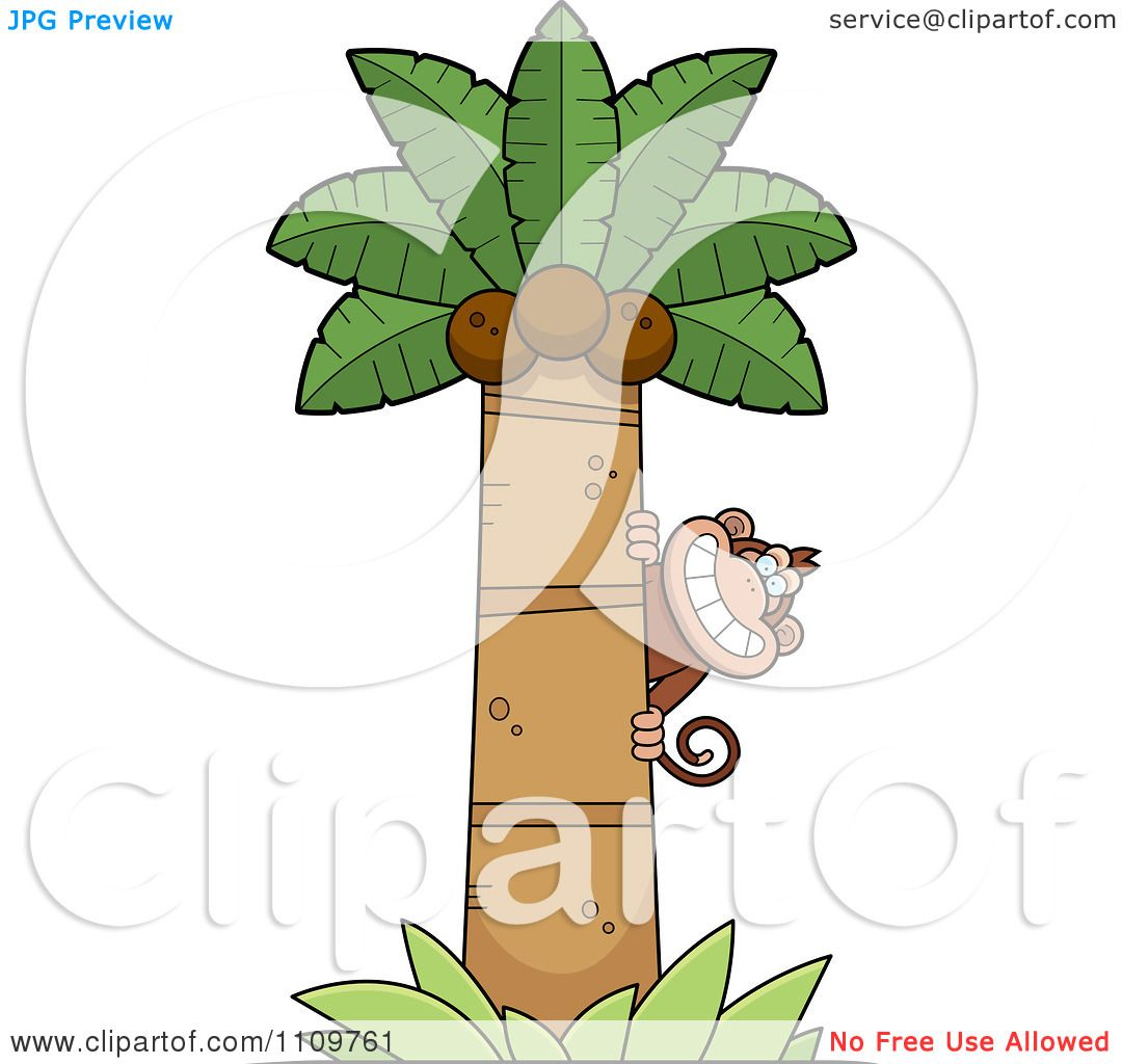 Clipart Monkey Behind A Coconut Palm Tree - Royalty Free Vector ...
