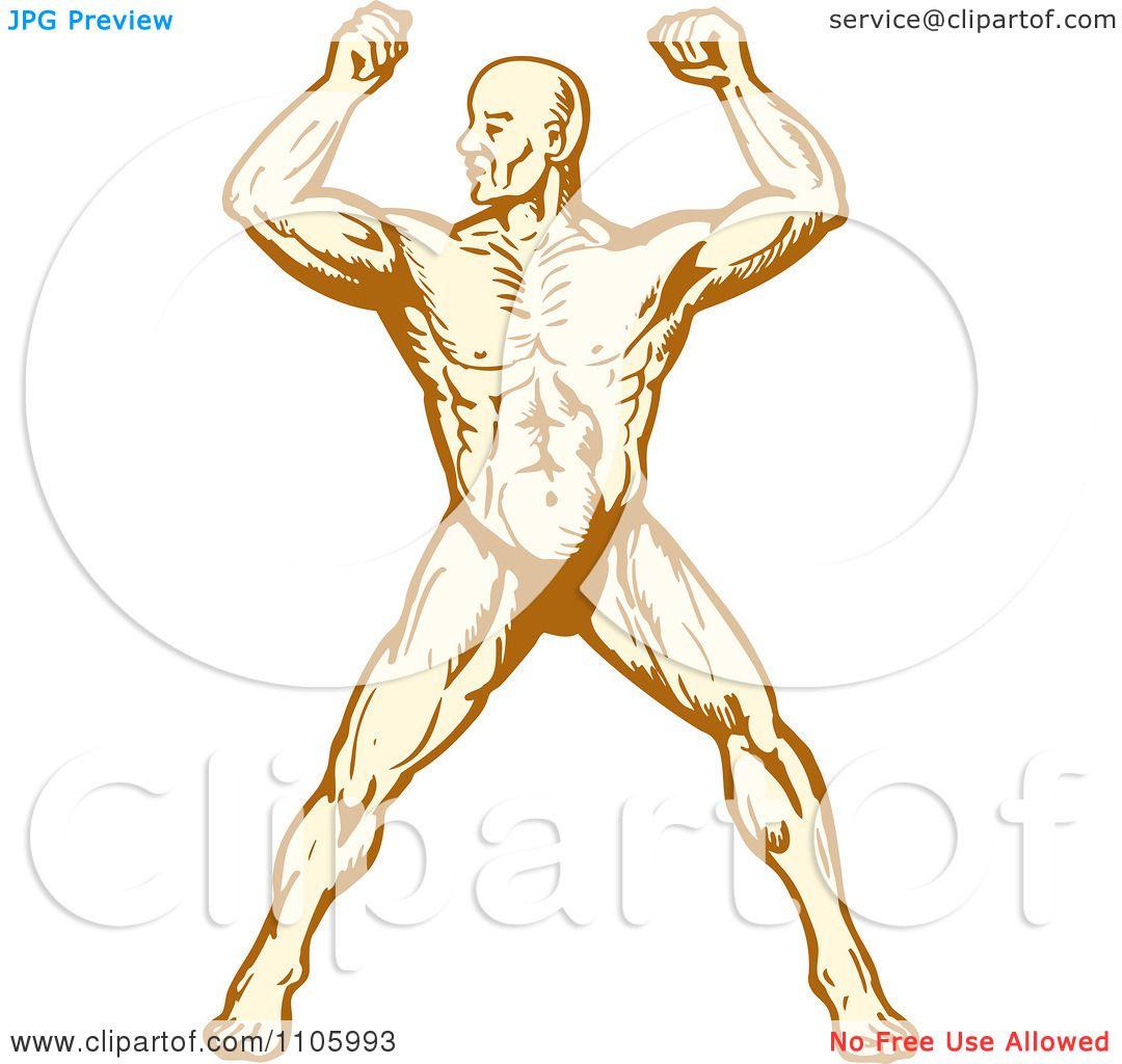 Clipart Muscular Body Builder Man Flexing Royalty Free