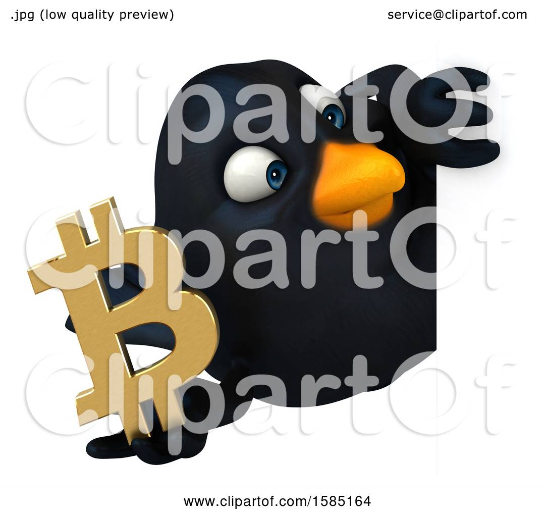 Bitcoins pictures of birds each way betting terms defined