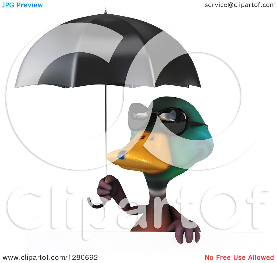 Clipart Of A 3d Mallard Drake Duck Wearing Sunglasses Over