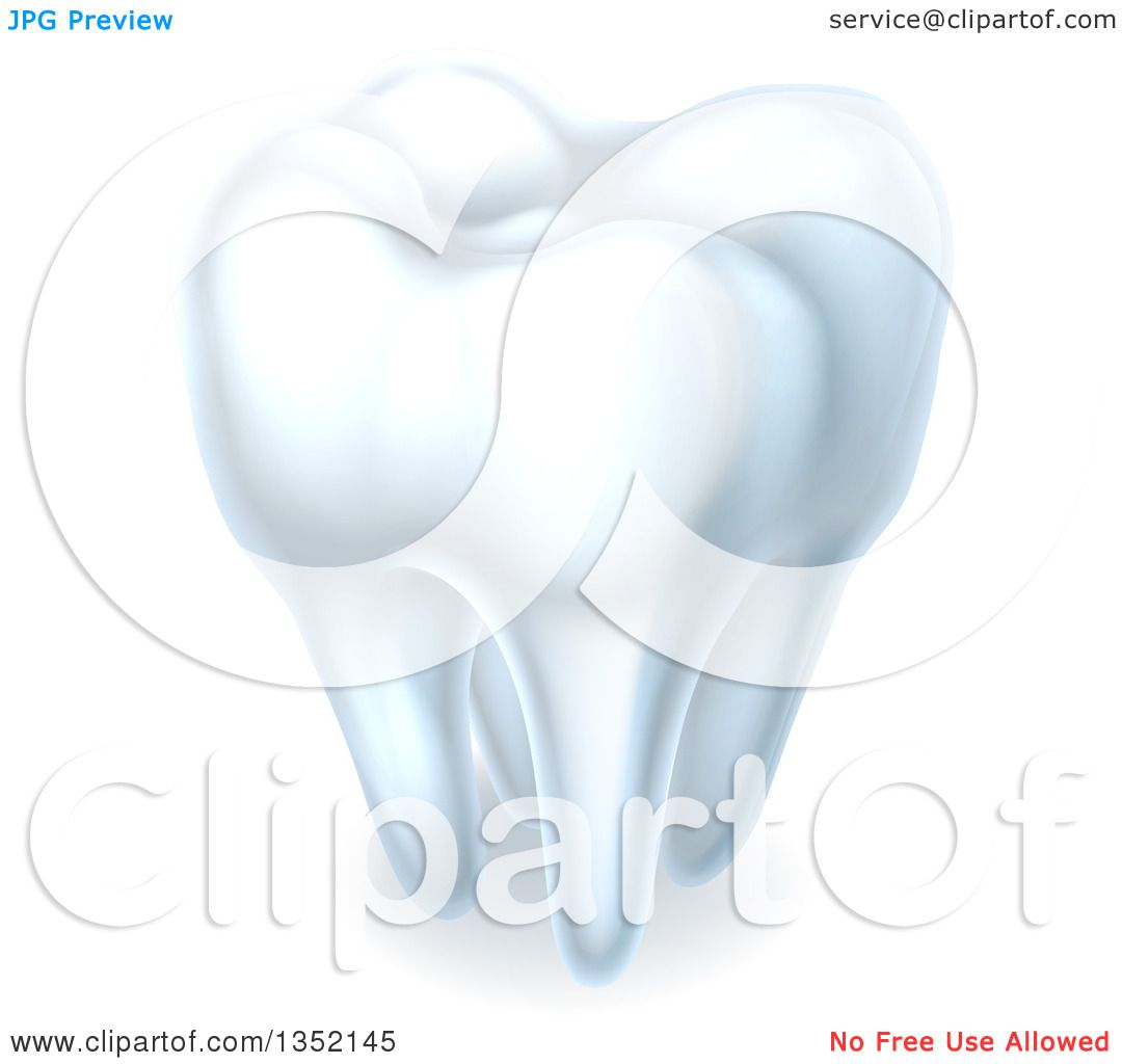 Clipart of a 3d Shiny White Tooth with Shading - Royalty ...
