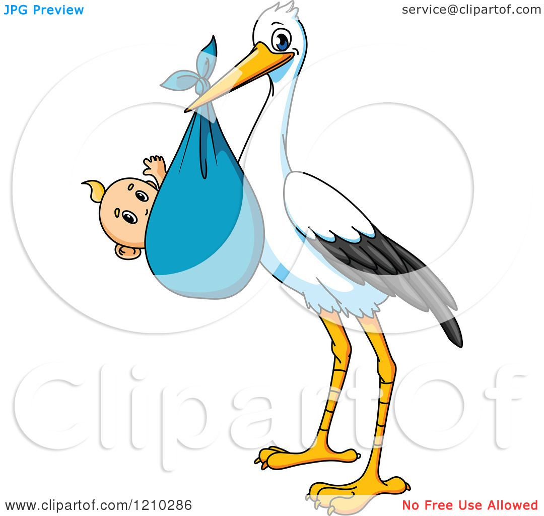 Clipart of a baby delivery stork with a boy royalty free vector