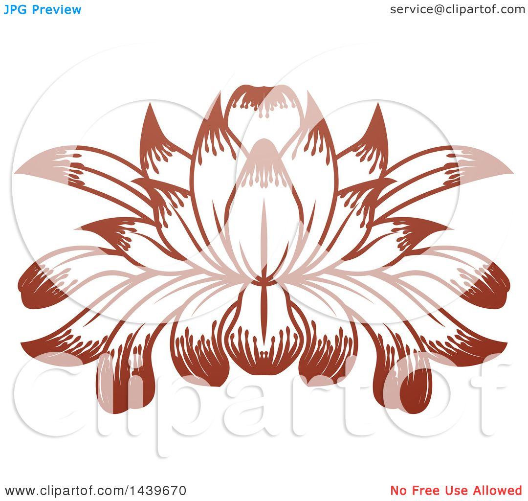 Clipart of a beautiful brown water lily lotus flower royalty free clipart of a beautiful brown water lily lotus flower royalty free vector illustration by atstockillustration izmirmasajfo Images