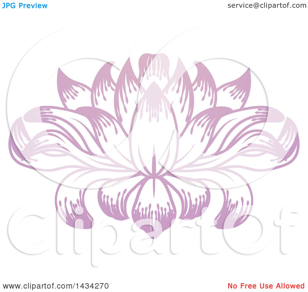 Clipart of a beautiful pink purple water lily lotus flower royalty clipart of a beautiful pink purple water lily lotus flower royalty free vector illustration by atstockillustration izmirmasajfo