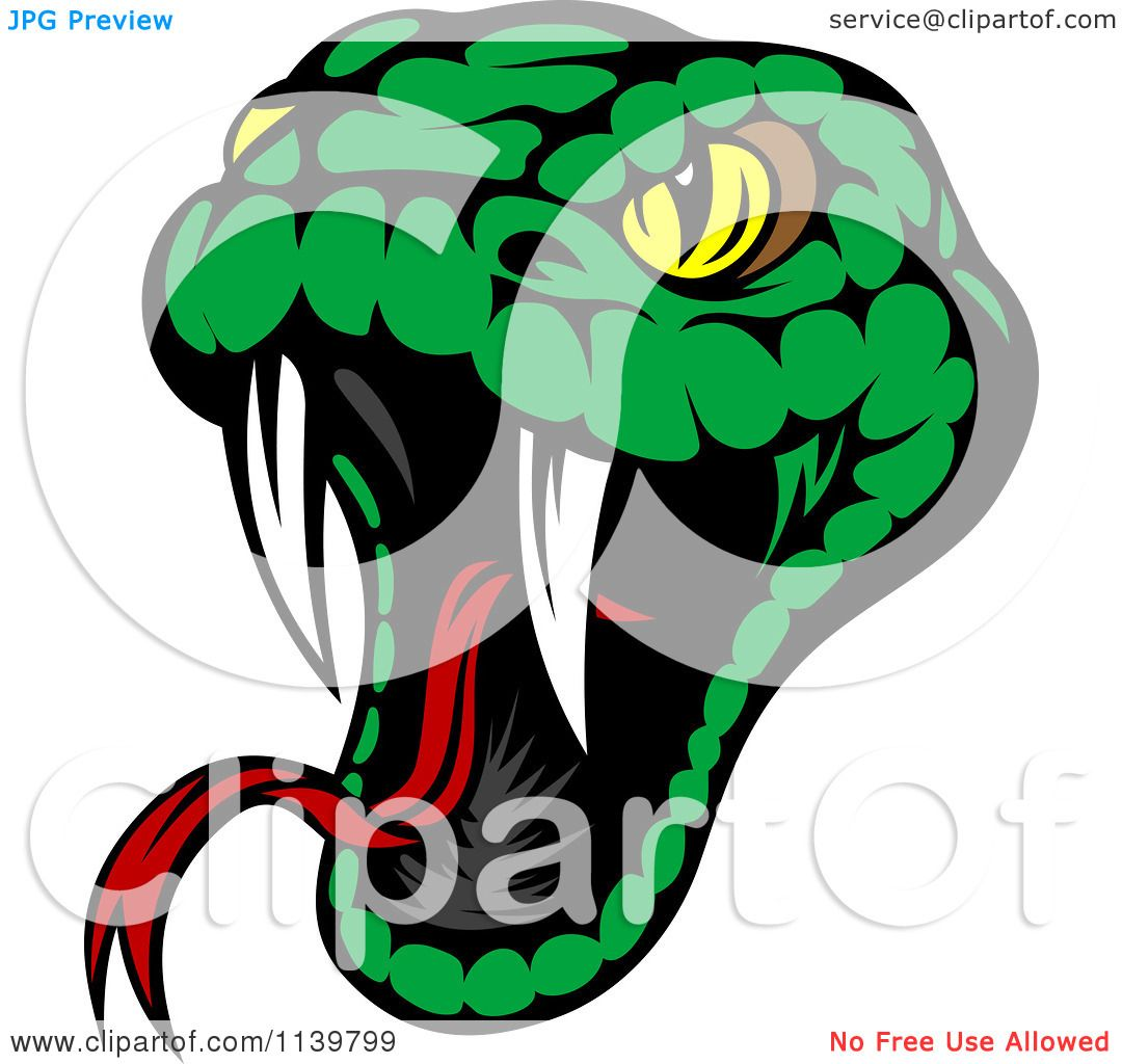Clipart Of A Biting Green Viper Snake Royalty Free