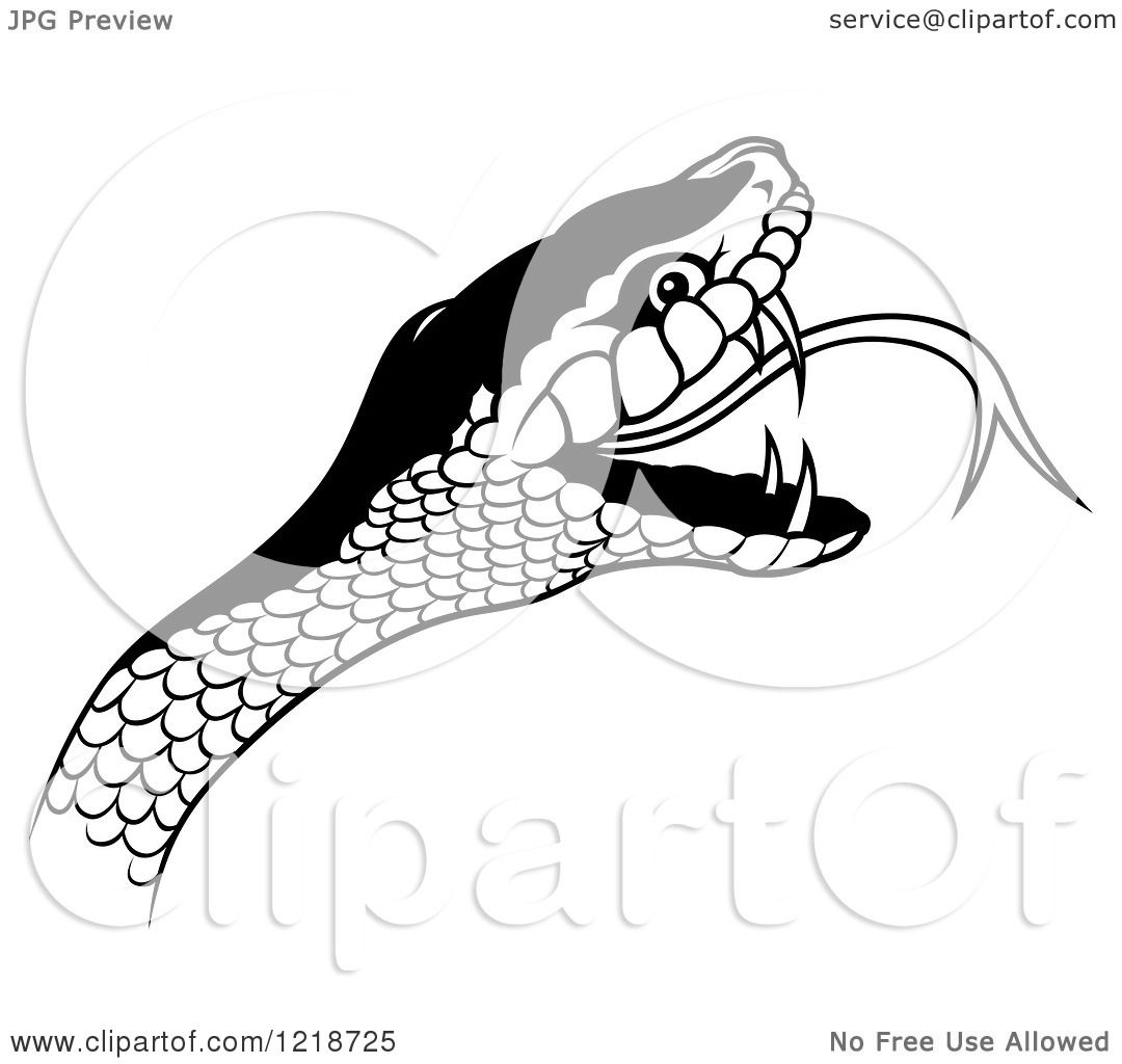 Clipart Of A Black And White Angry Snake Head Royalty