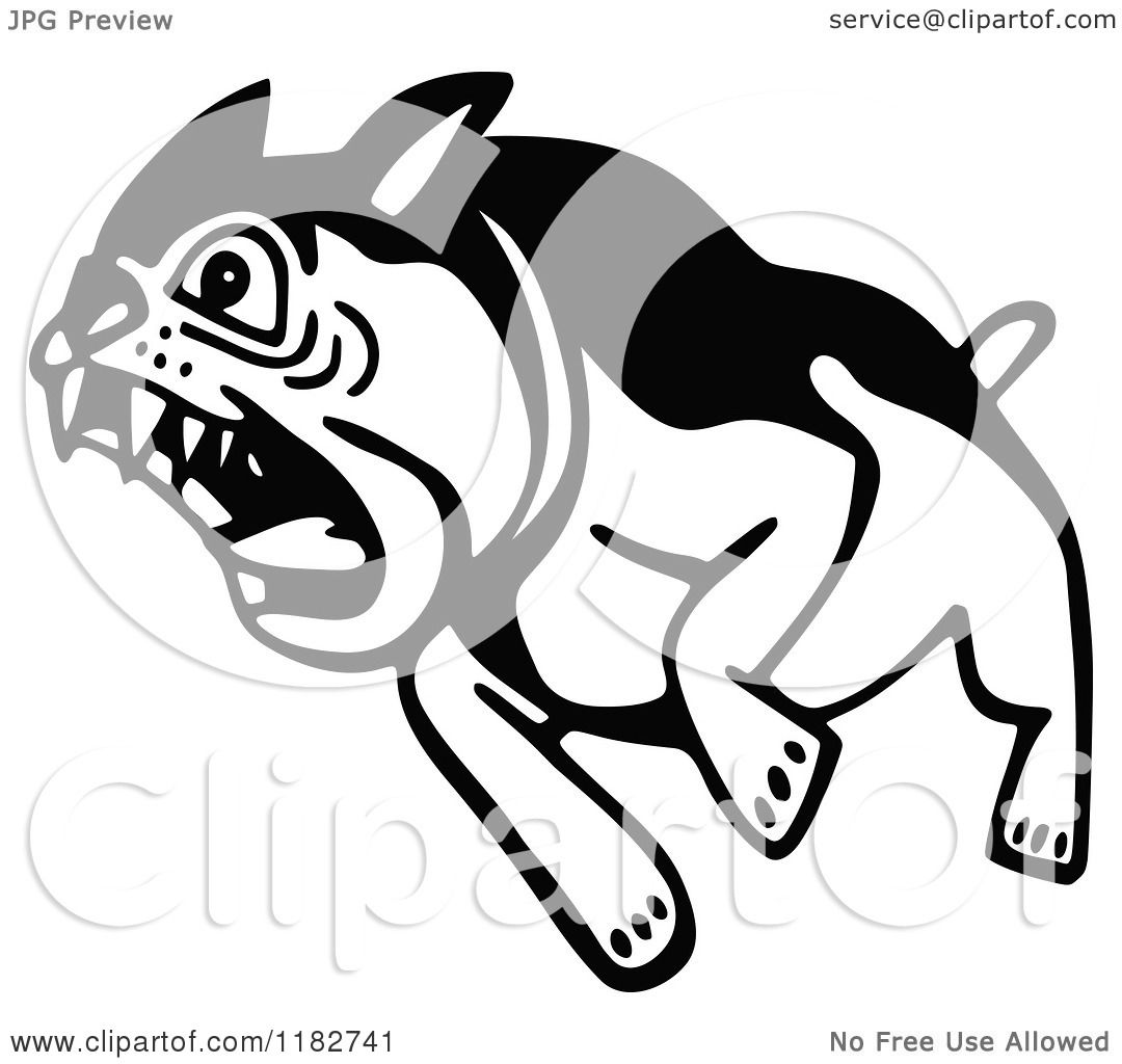 Clipart Of A Black And White Attacking Bulldog Royalty
