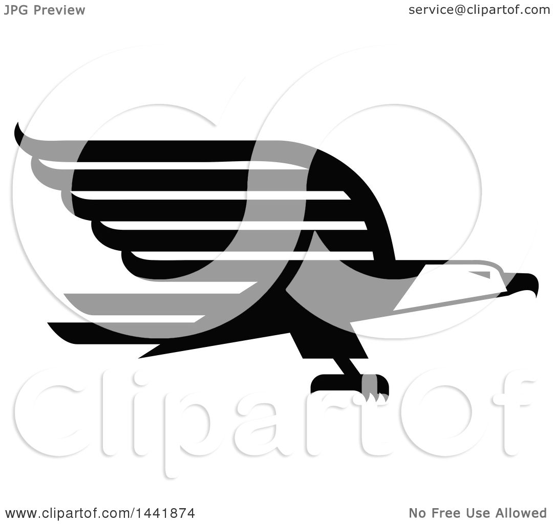 Clipart Of A Black And White Bald Eagle Flying Royalty Free Vector