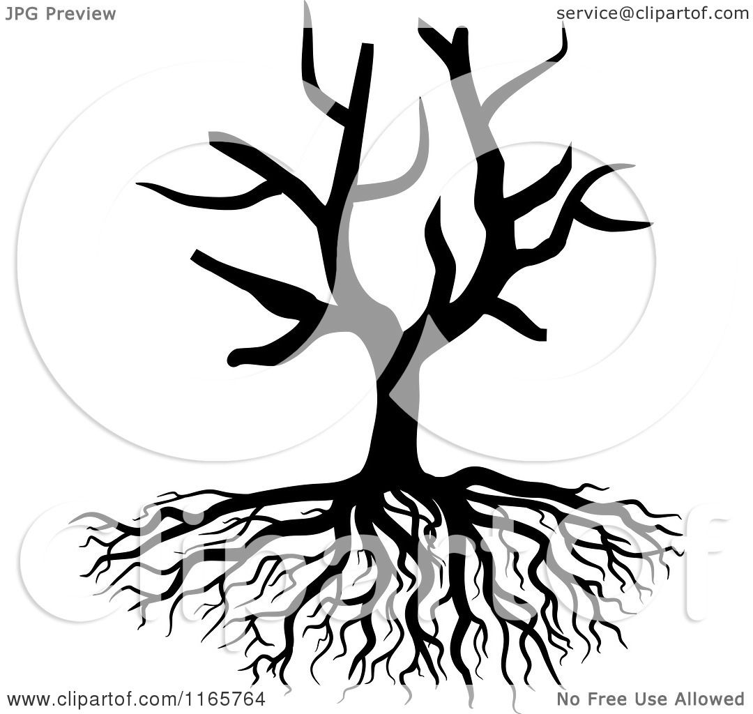 Clipart of a Black and White Bare Tree and Roots - Royalty ...