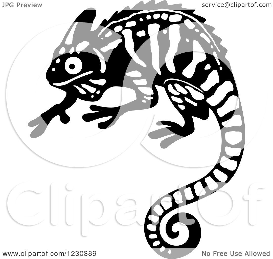 Clipart of a Black and White Chameleon Lizard 2 - Royalty ...