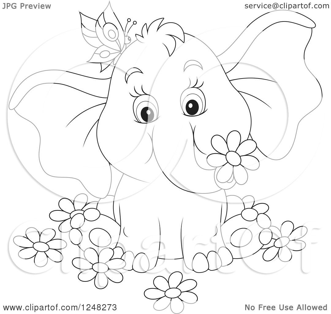 Black And White Cute Elephant With A Butterfly And Flowers 1248273 on 8 dogs illustration