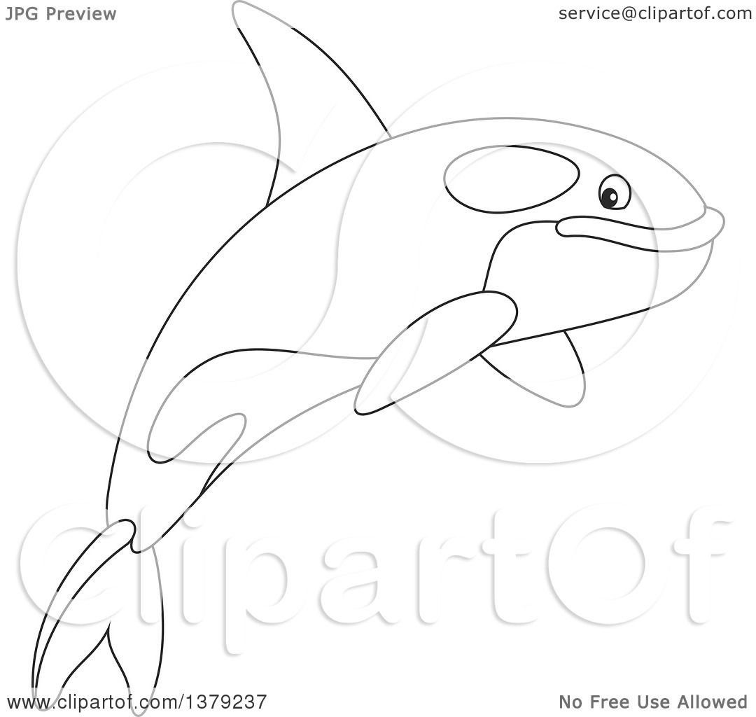 Free coloring pages killer whale - Clipart Of A Black And White Cute Leaping Orca Killer Whale Royalty Free Vector Illustration By Alex Bannykh