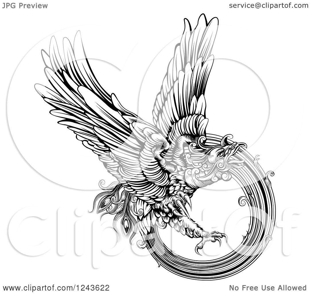 Black And White Engraved Majestic Phoenix Bird Flying 1243622 additionally Ae86 Wiring Diagram likewise  on geo care rise