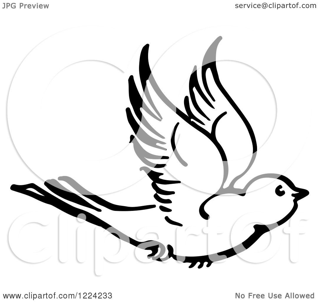 Clipart of a Black and White Flying Bird - Royalty Free Vector ...