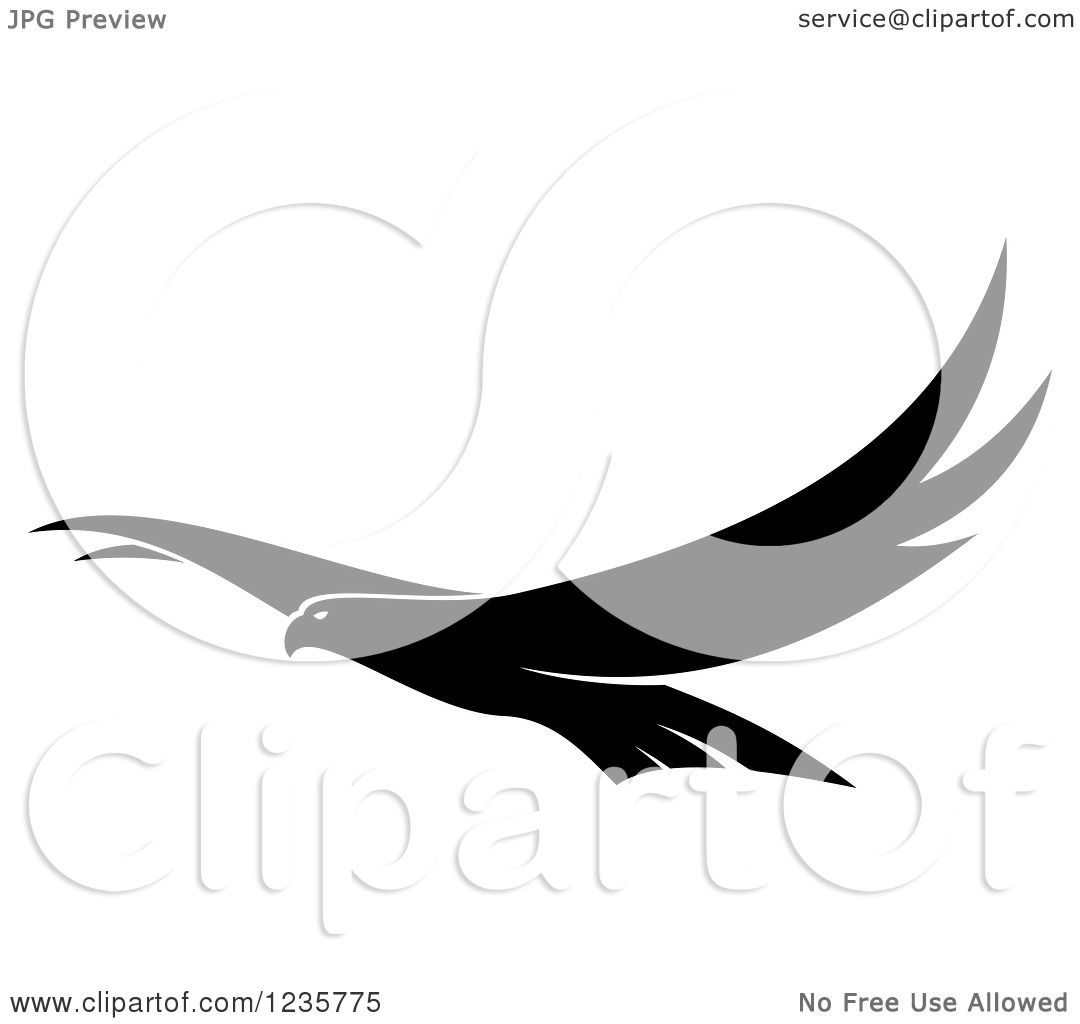 Clipart Of A Black And White Flying Falcon Royalty Free