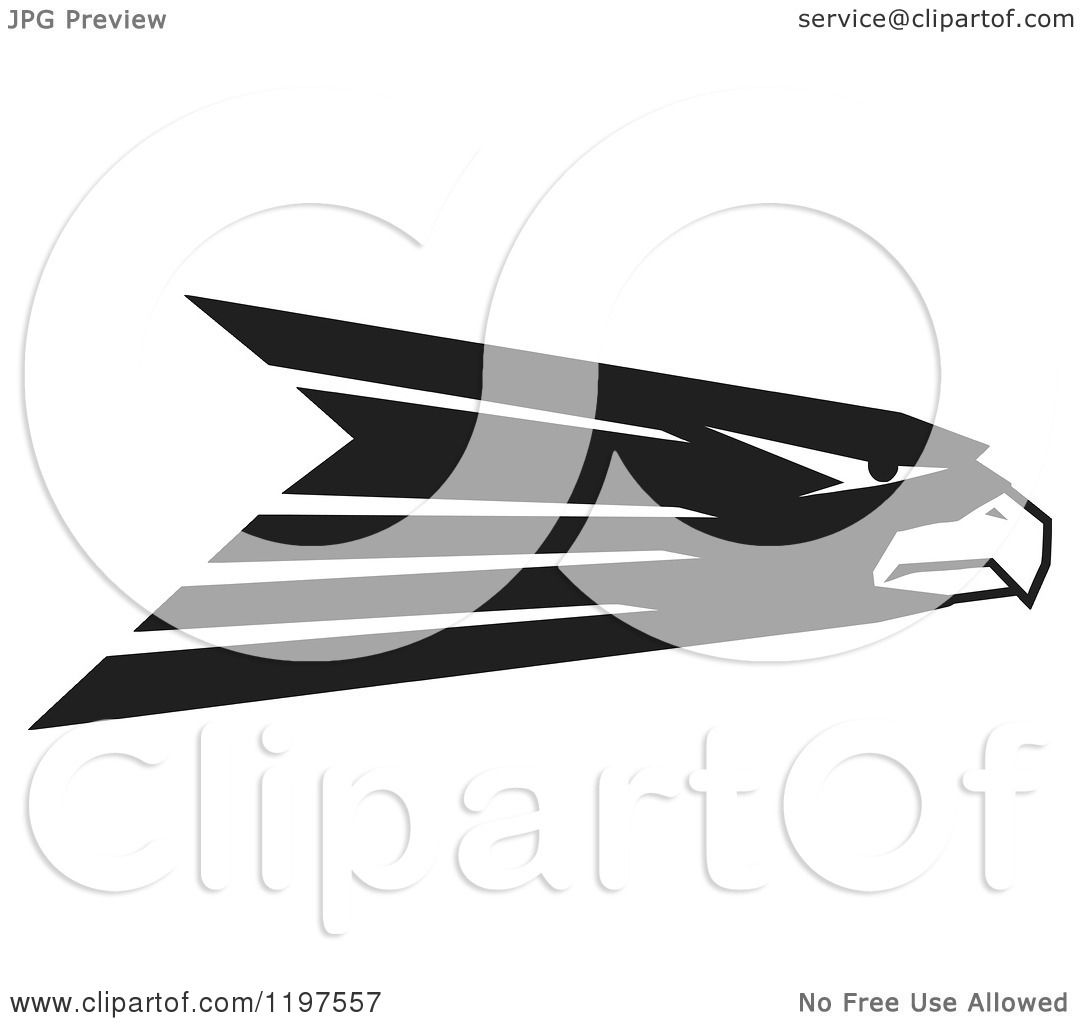 Clipart of a Black and White Hawk Eagle or Falcon Mascot - Royalty ...