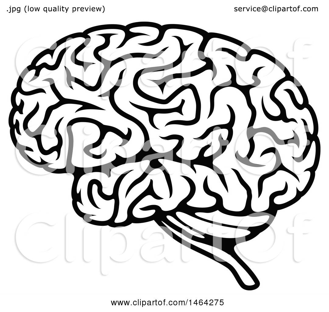 Clipart of a Black and White Human Brain - Royalty Free ...