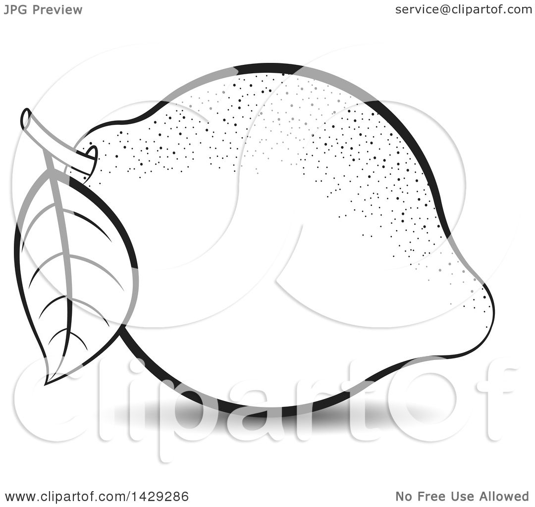 Clipart of a Black and White Lemon - Royalty Free Vector ... for Clipart Lemon Black And White  565ane