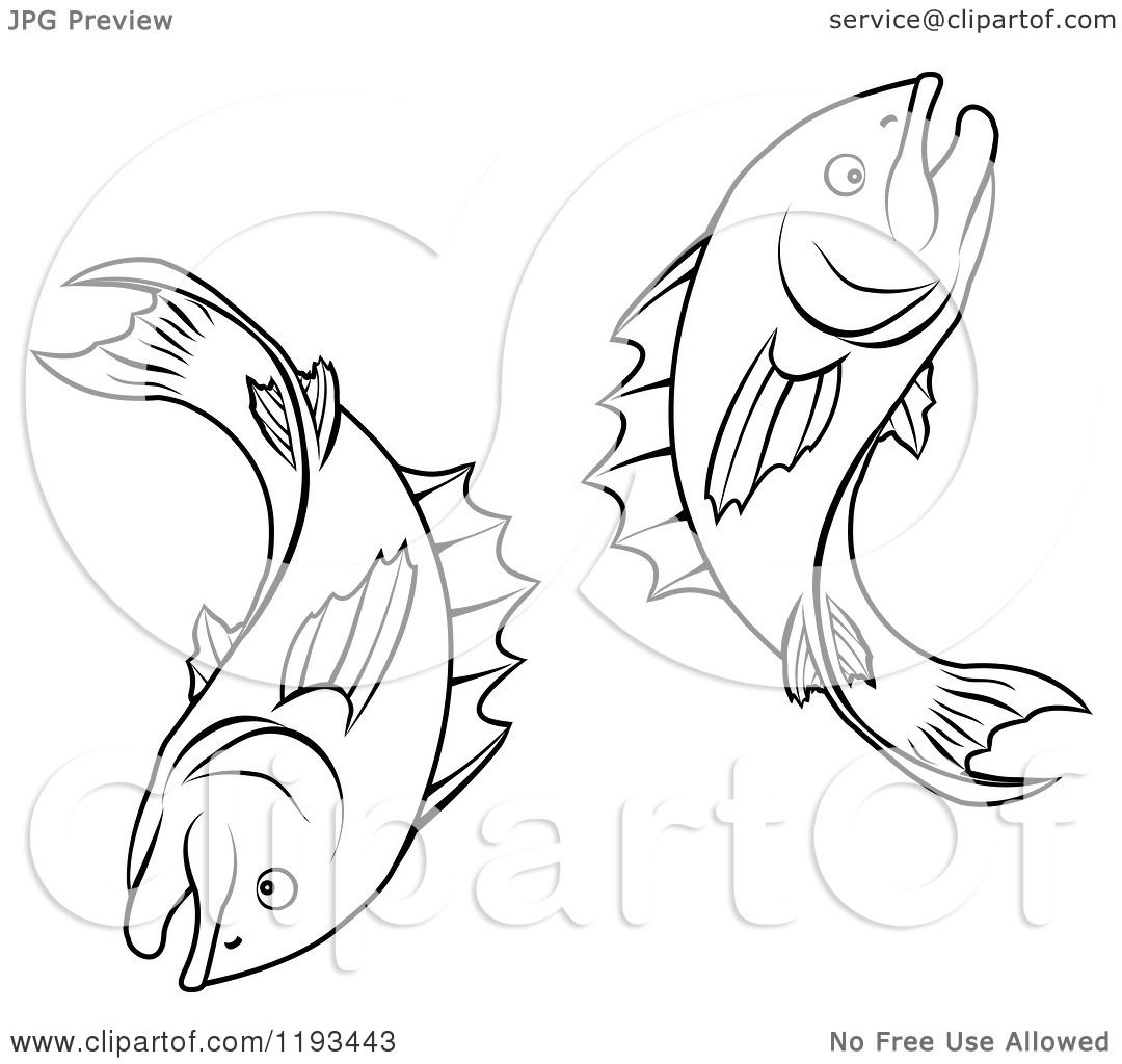 Zodiac Line Drawing : Clipart of a black and white line drawing the pisces