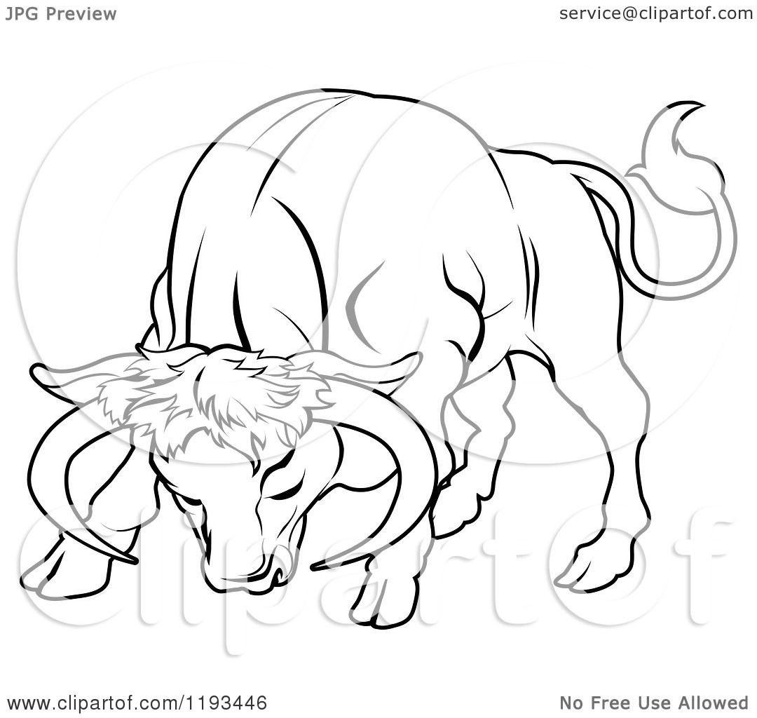 Zodiac Line Drawing : Clipart of a black and white line drawing the taurus