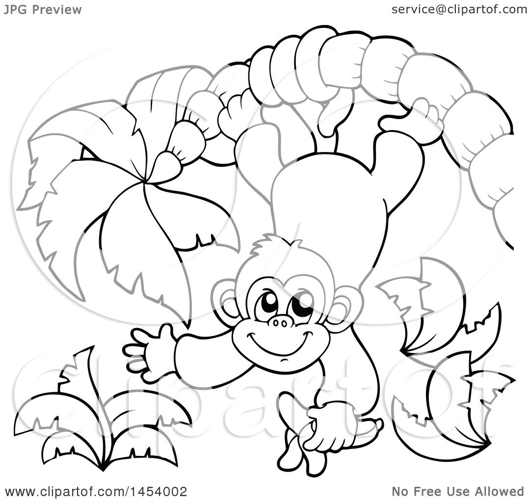 Clipart of a Black and White Lineart Happy Monkey Hanging from a ... for Line Drawing Monkey  173lyp