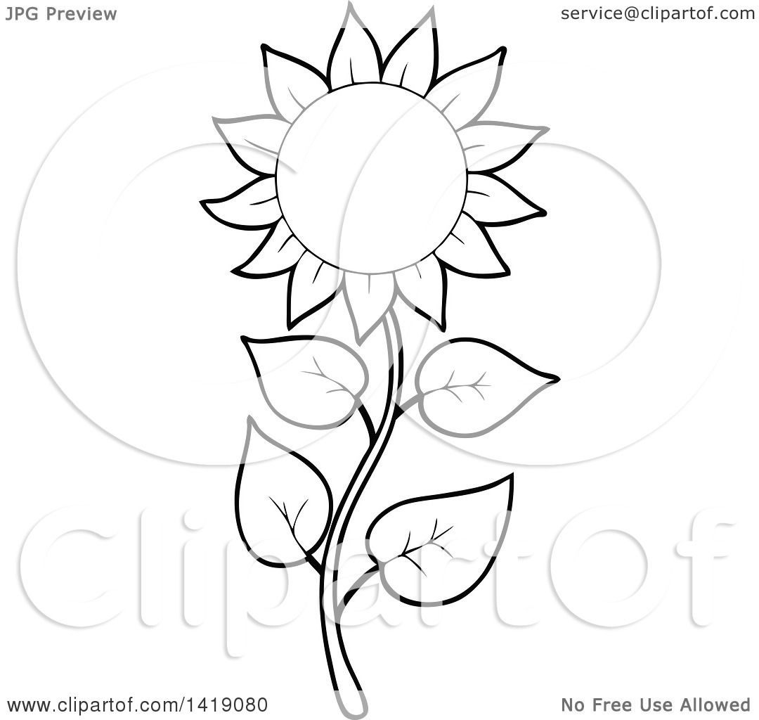 Clipart of a Black and White Lineart Sunflower - Royalty ...