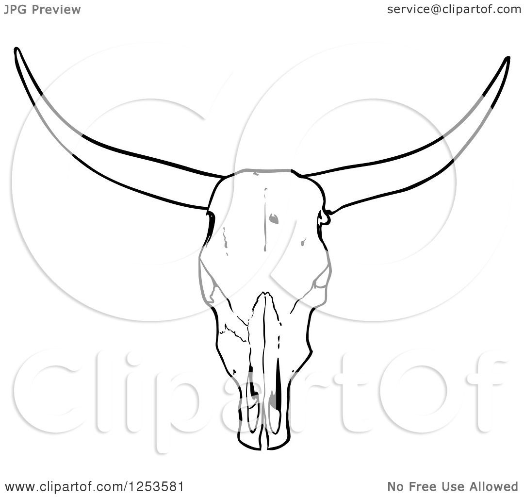 Anatomy Skull Coloring Pages