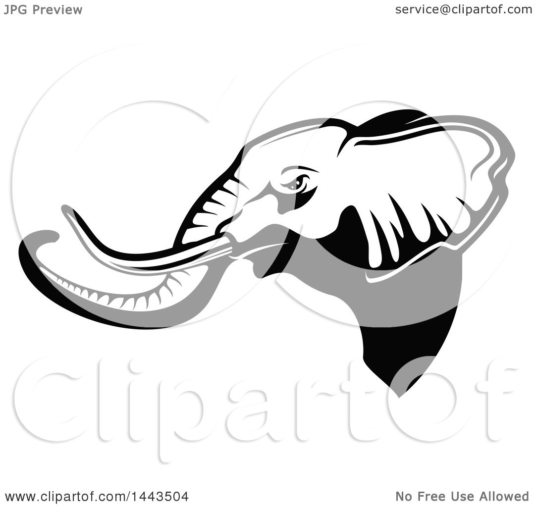 Clipart of a Black and White Profiled Elephant Mascot Head ...