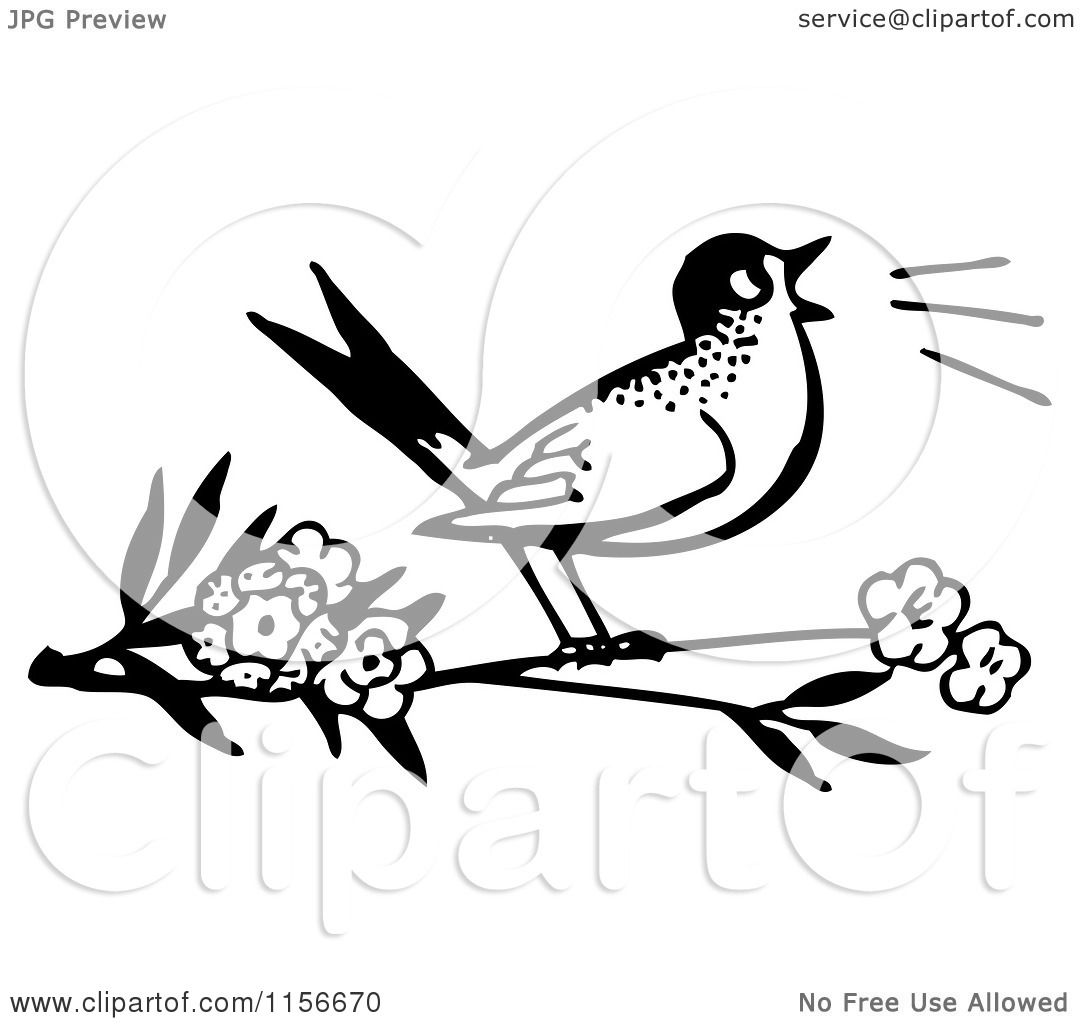 Free Bird Clipart Black And White Clipart of a Black And White
