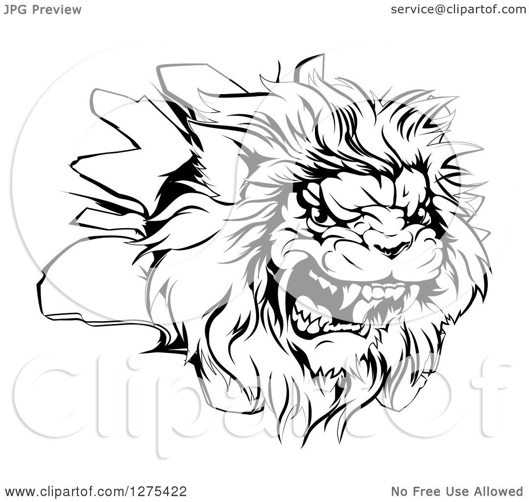 Water Transportation Clipart Black And White Lion 42 Photos