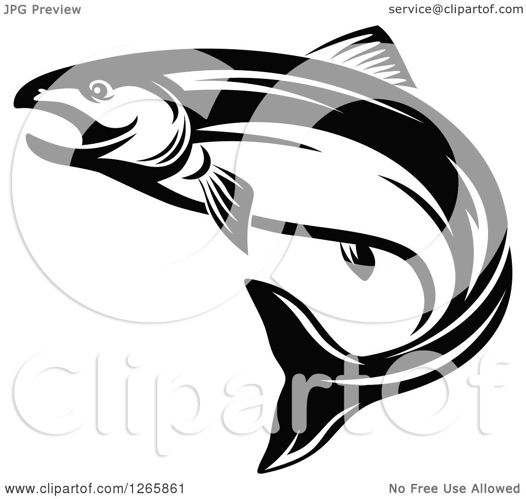 Clipart Of A Black And White Salmon Fish