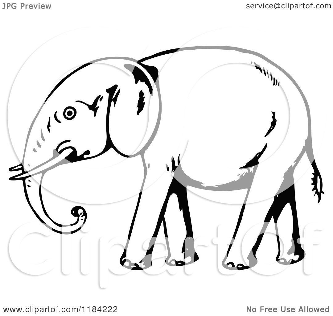 Clipart of a Black and White Walking Elephant - Royalty ...