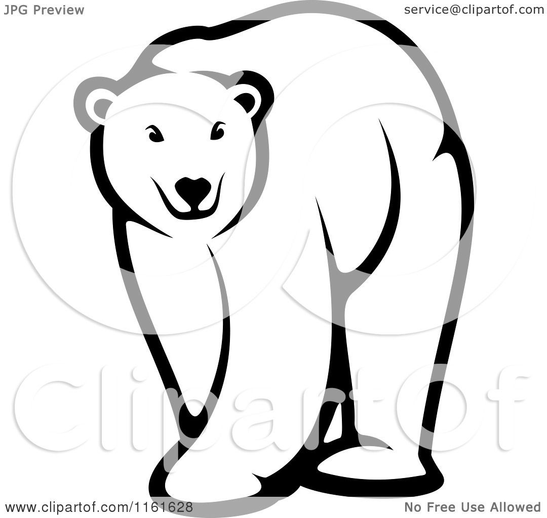 clipart of a black and white walking polar bear royalty Polar Bear Face Clip Art Polar Bear Face Clip Art