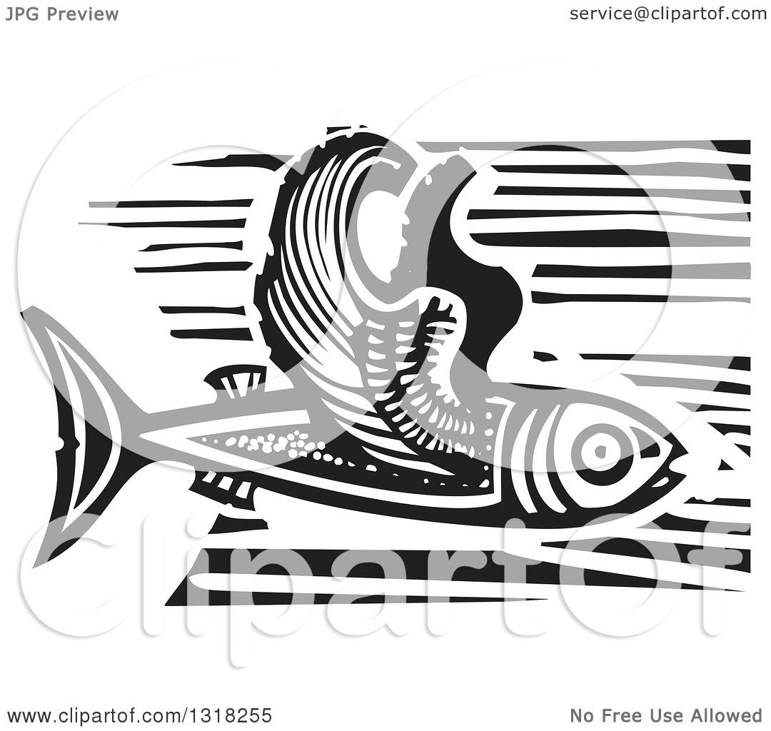 Clipart of a Black and White Woodcut Flying Fish - Royalty Free ...