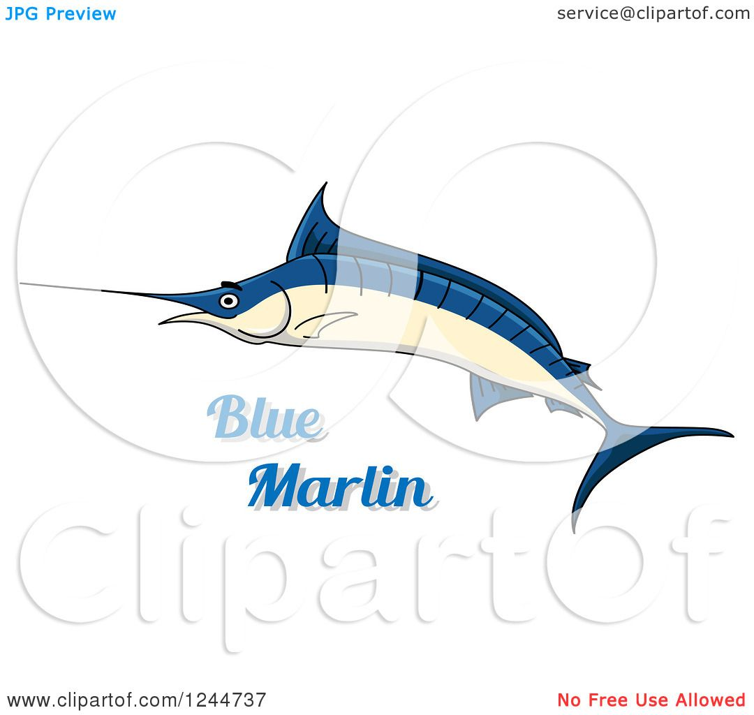 Free Blue Marlin Fish Coloring Pages