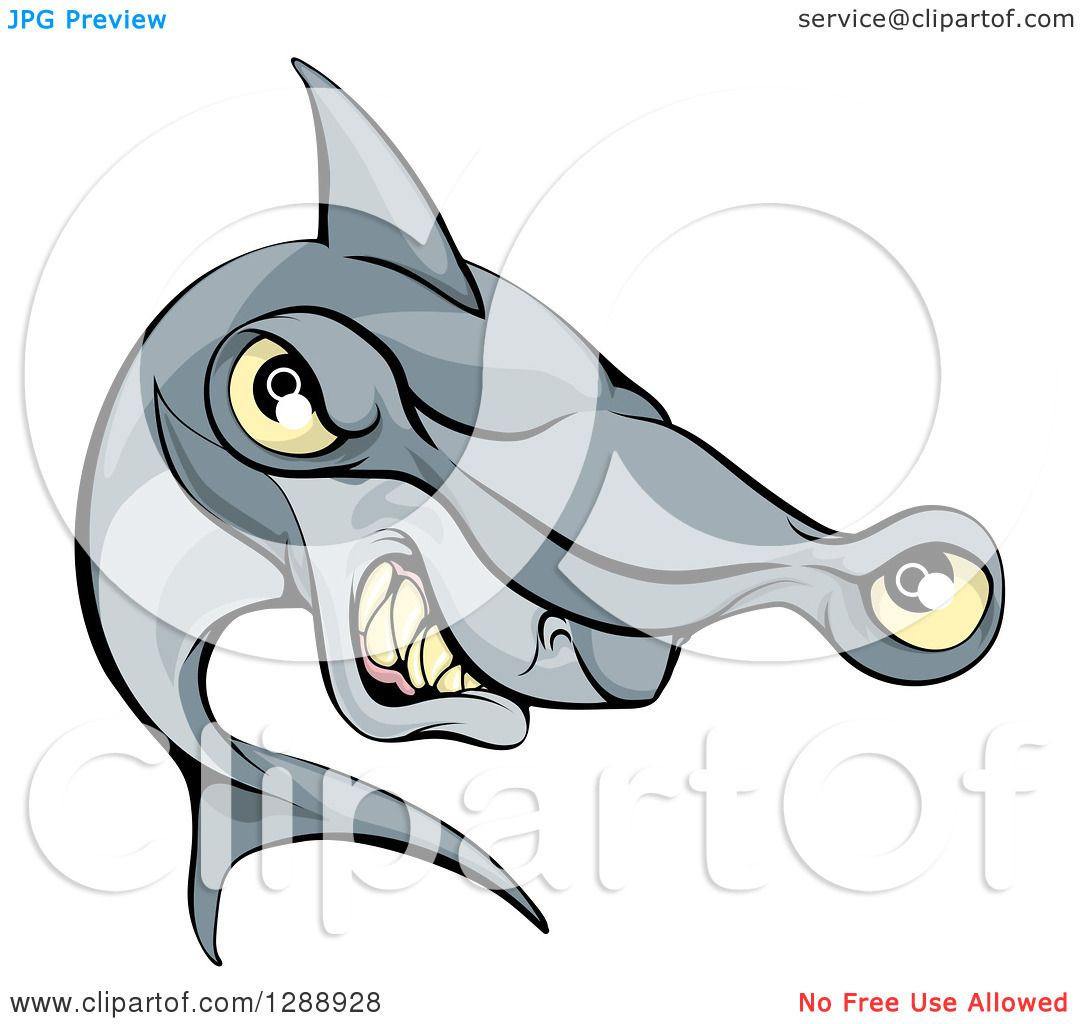 Clipart of a Cartoon Aggressive Grinning Hammerhead Shark ...