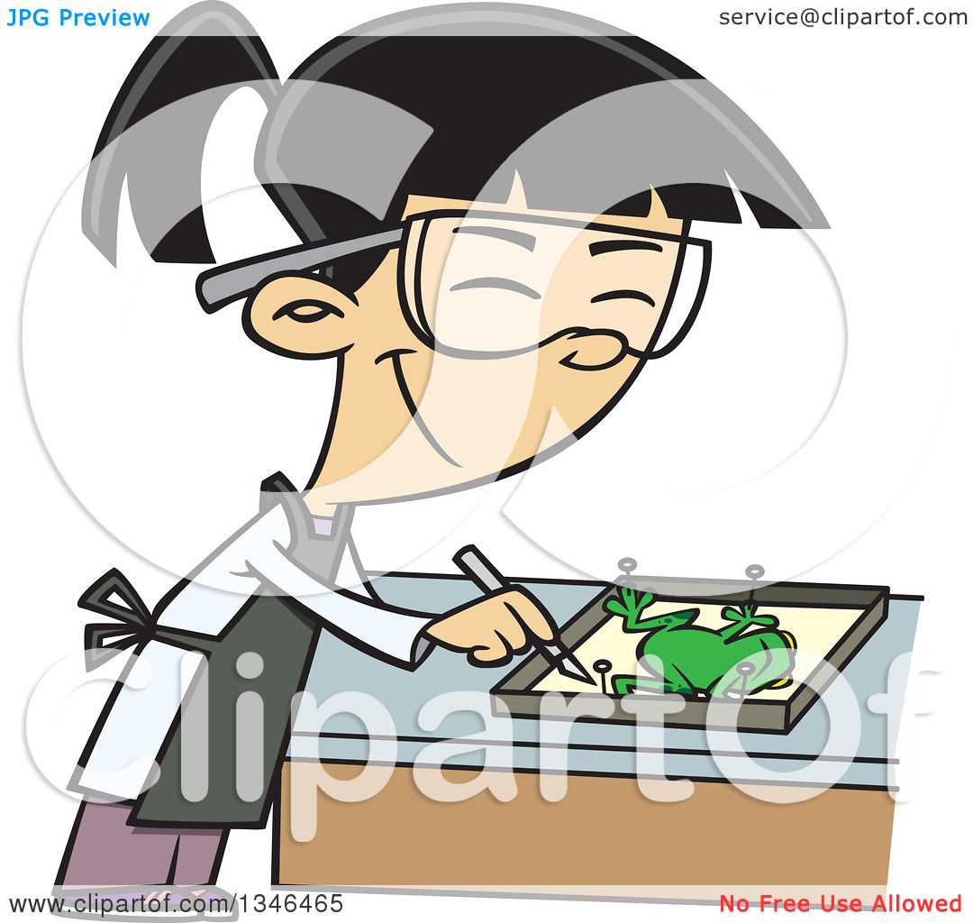 clipart of a cartoon asian dissecting a frog in class