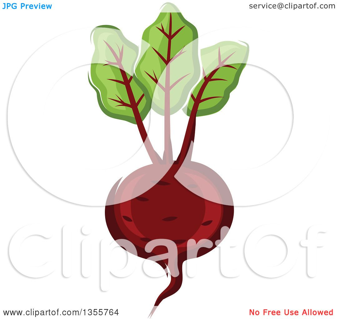free clipart beets - photo #50
