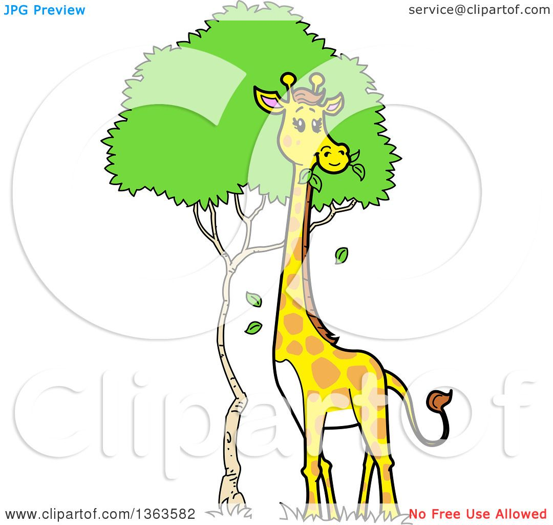 clipart of a cartoon giraffe munching on tree leaves royalty