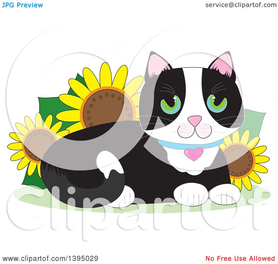 Clipart Of A Cartoon Happy Green Eyed Tuxedo Cat Resting