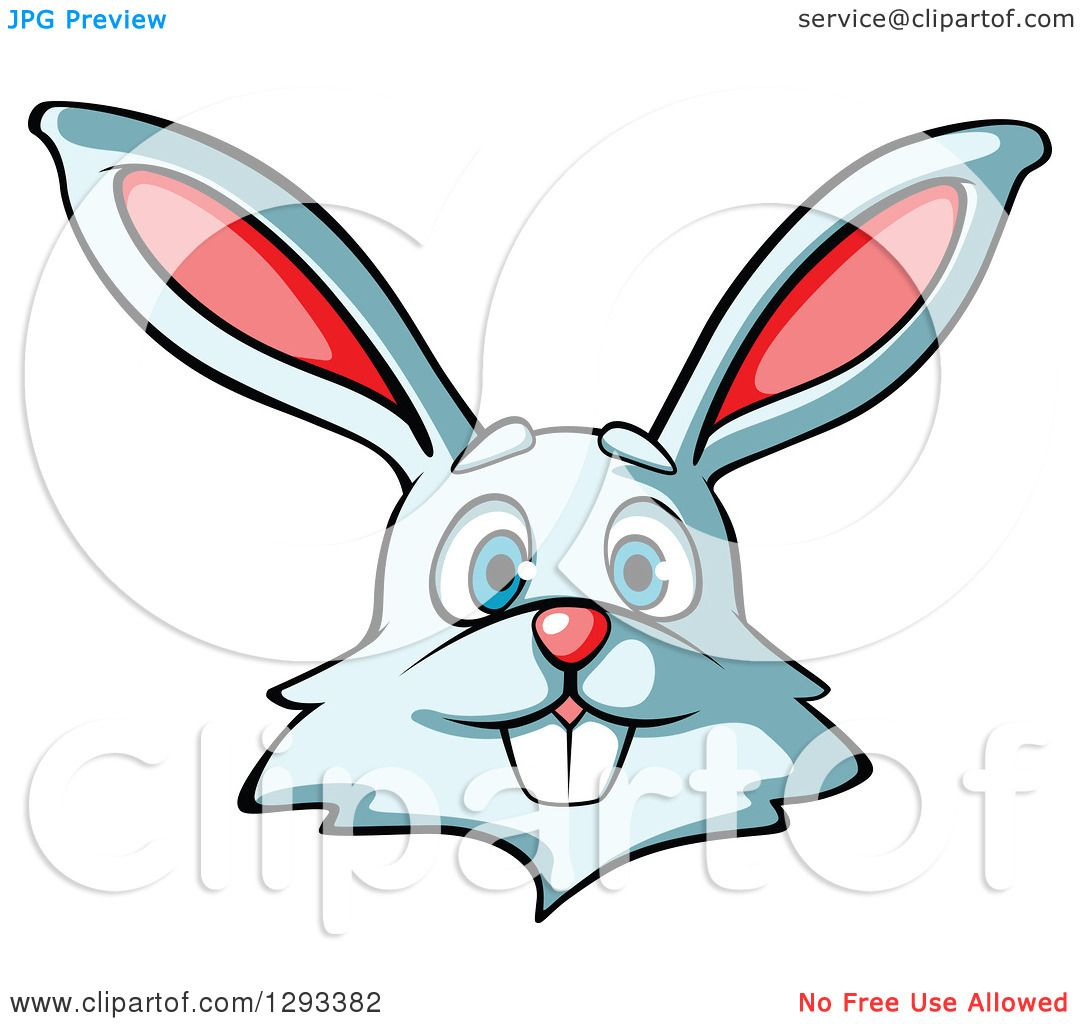 Cartoon rabbit face - photo#16
