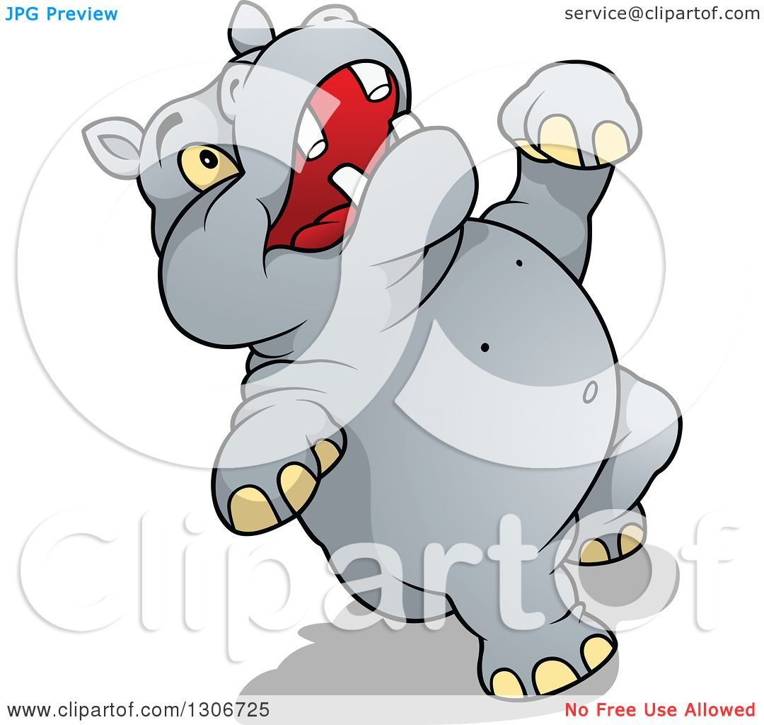 Clipart of a Cartoon Hippo Laughing or Falling Backwards ...