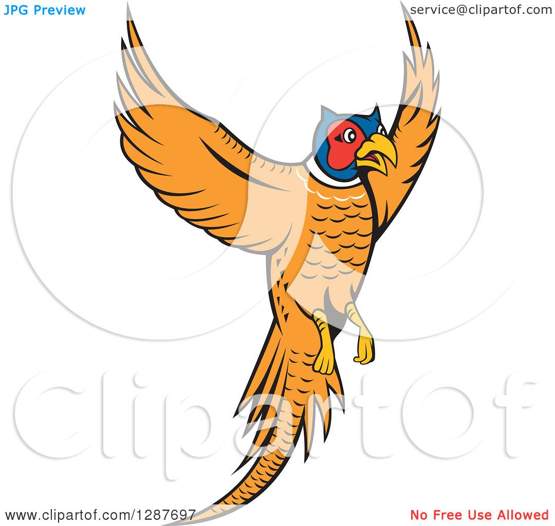 New images for 3/161476 Cartoon Flying Quail & Related Suggestions