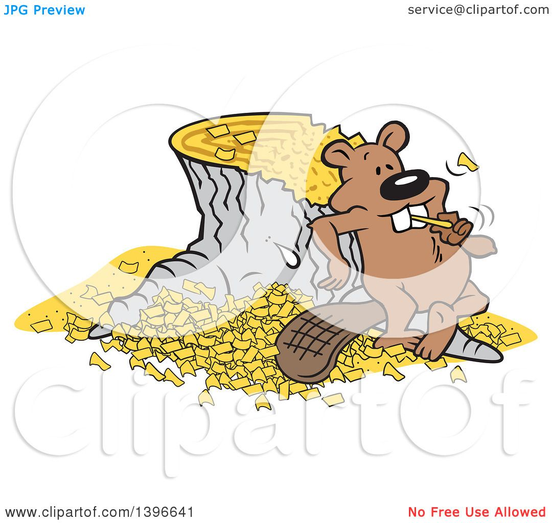 Clipart of a Cartoon Pleased Beaver Eating a Chunk After Chopping ...